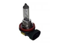 Fog Lamp Bulb