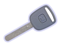 Immobilizer Key