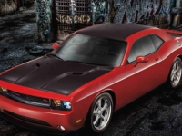 Hood, Roof and Decklid Graphics