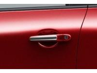 Chrome Door Handle Accents