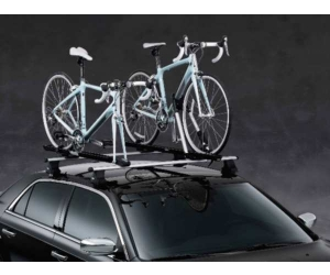 Roof Mounted Upright Mount Bike Carrier