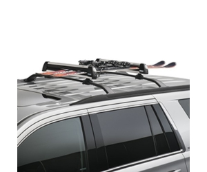 Roof Mounted Ski Carrier