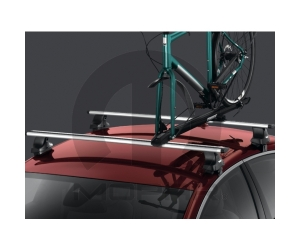 Removable Thule Roof Rack
